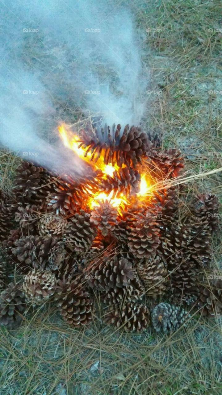 pine cone fire. army