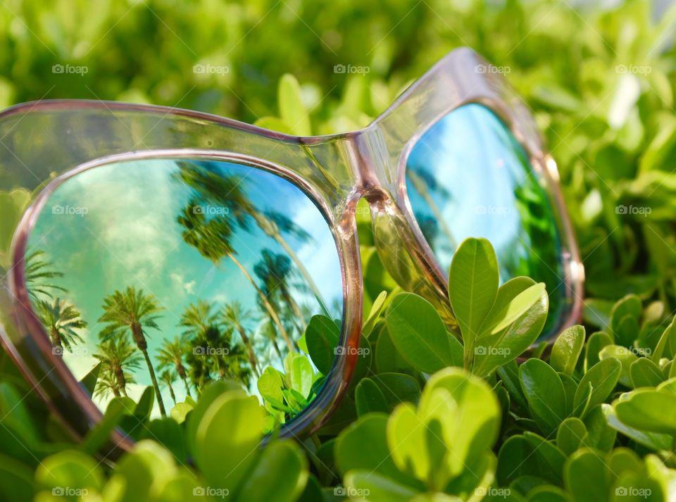 Sunglasses on green grassyland