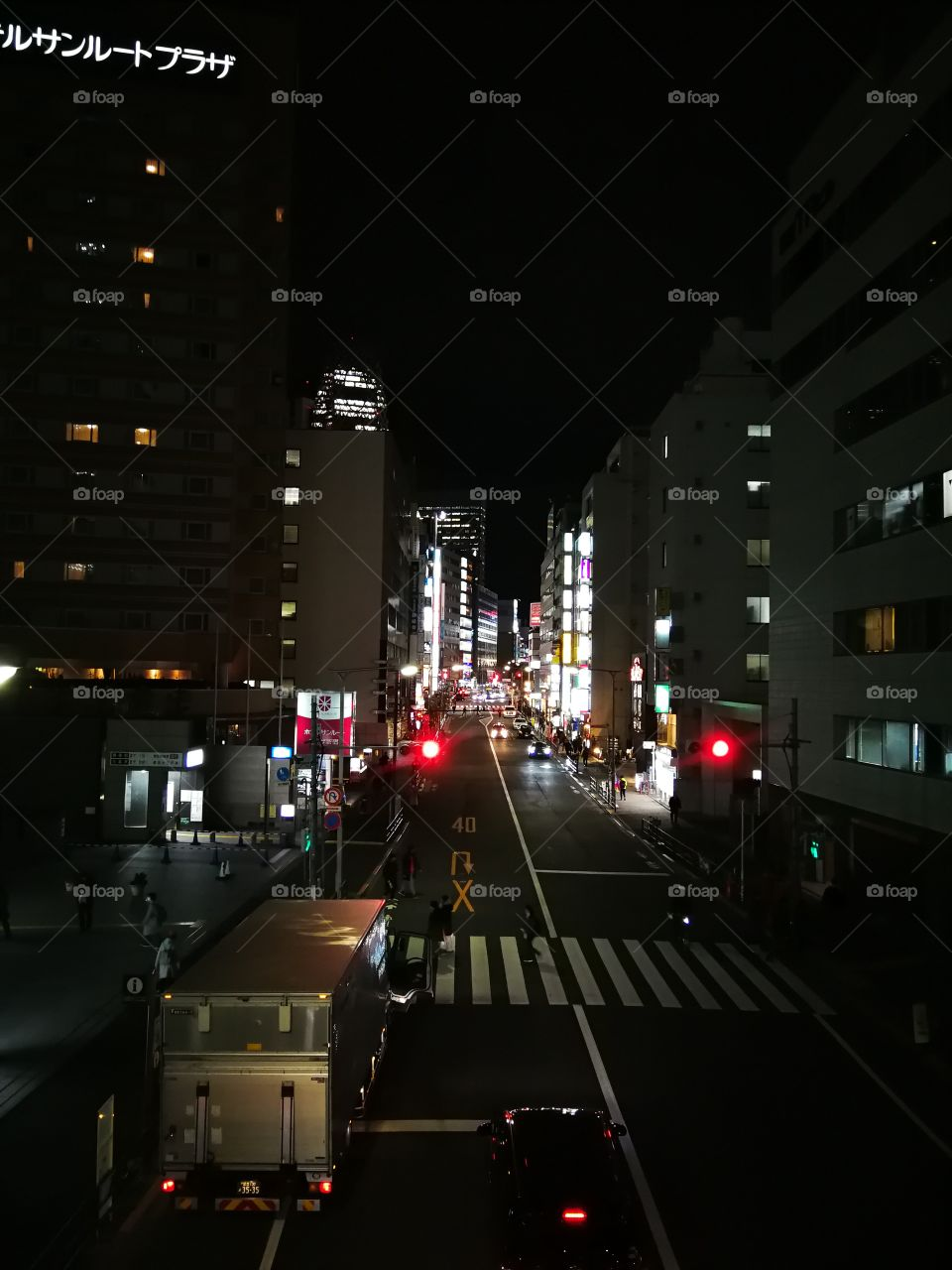 Stoplight in the streets of Tokyo