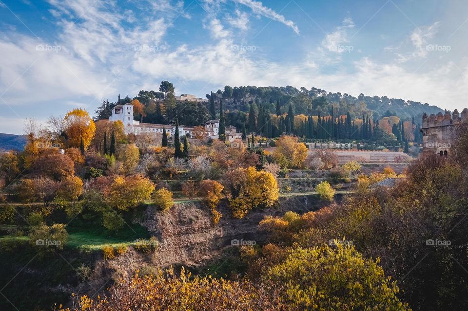 Beautiful foliage in Granada