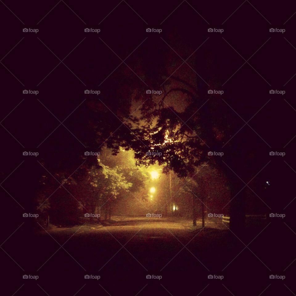 Foggy Night. Schenectady, NY