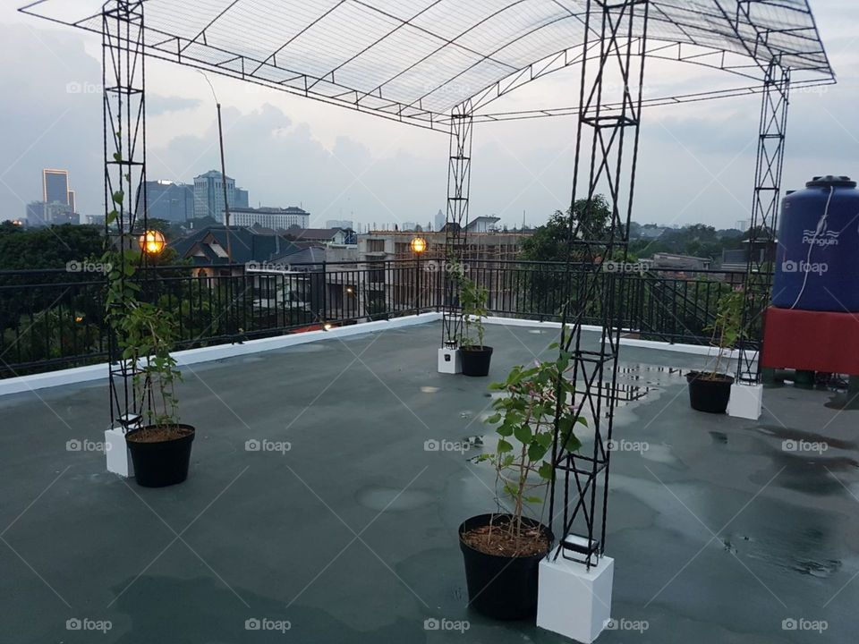 at the roof
