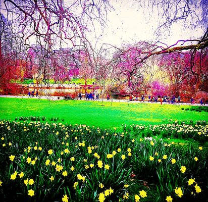 People enjoying colours of Spring