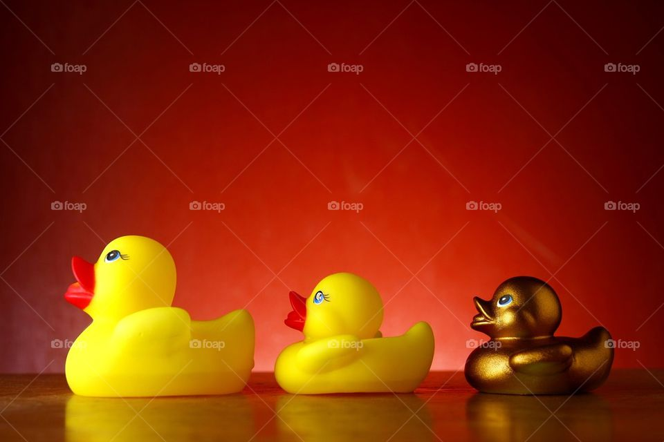 rubber duckies and one golden rubber duckling