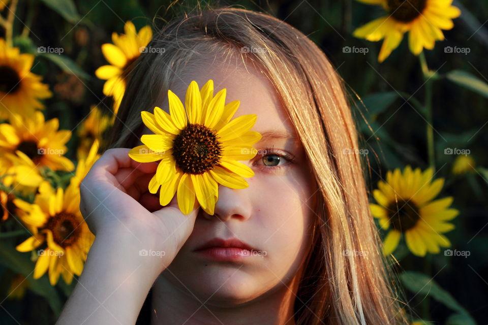 Eye Of the Sunflower