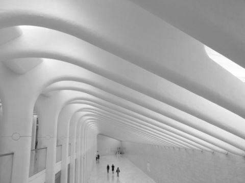 Arching Architecture . Arching Architecture