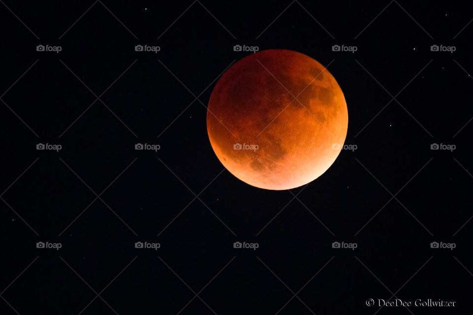 The Blood moon.