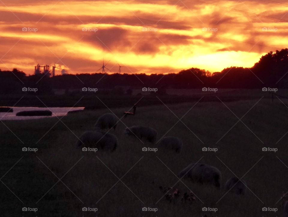 Sunset on the dike