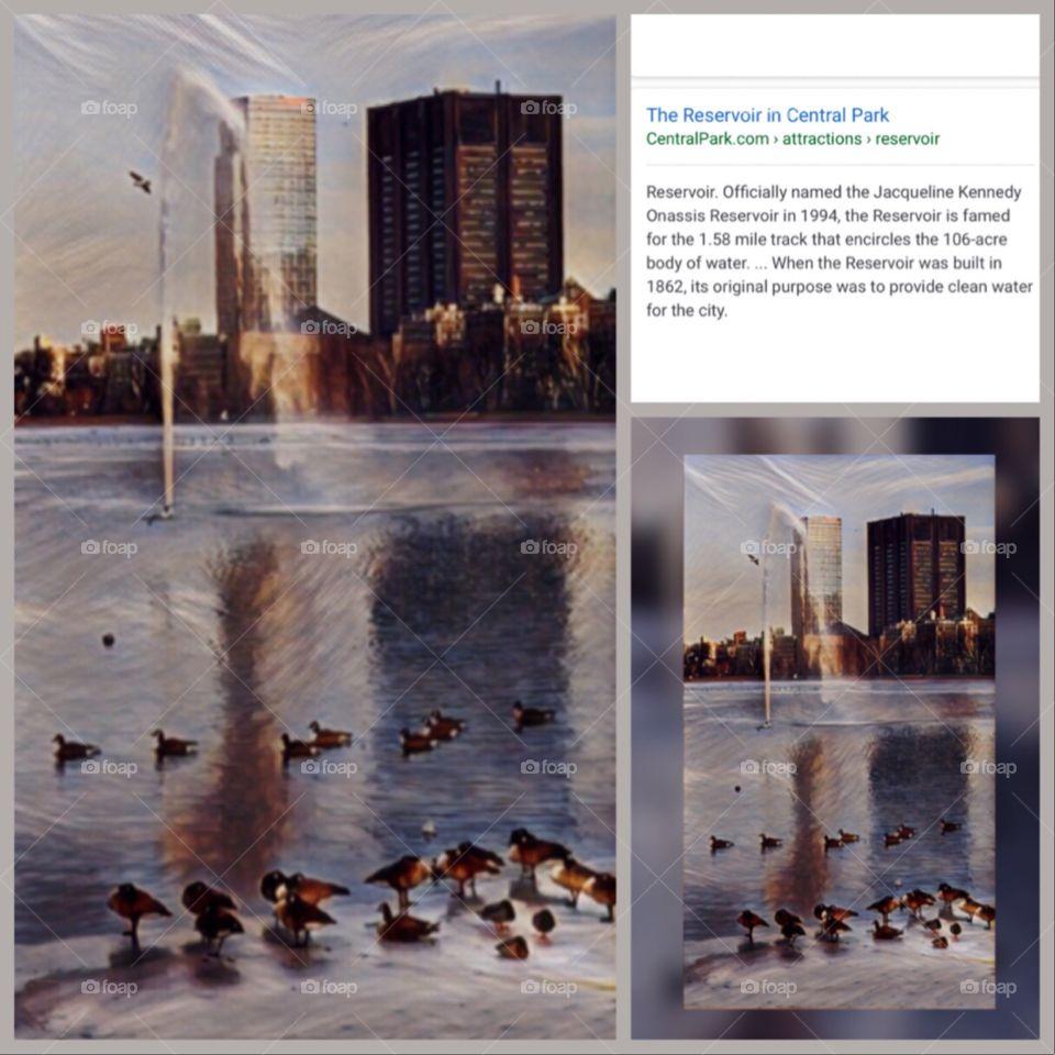 Jacqueline Kennedy Onassis Reservoir, Central Park, New York City.