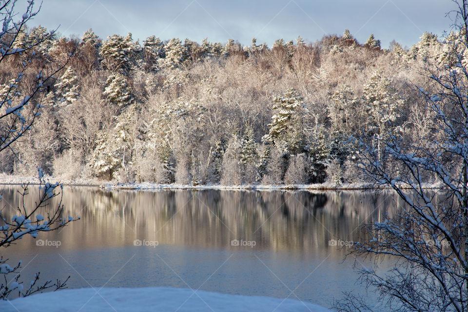 Beautiful winter wonderland lake reflection - vinterlandskap skog sjö reflektion