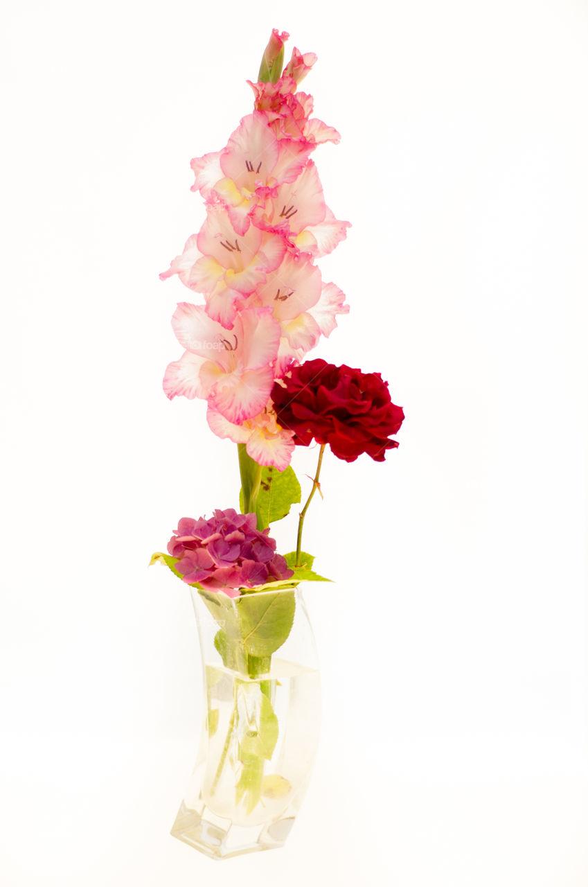 spring flowers of love by kk_tt