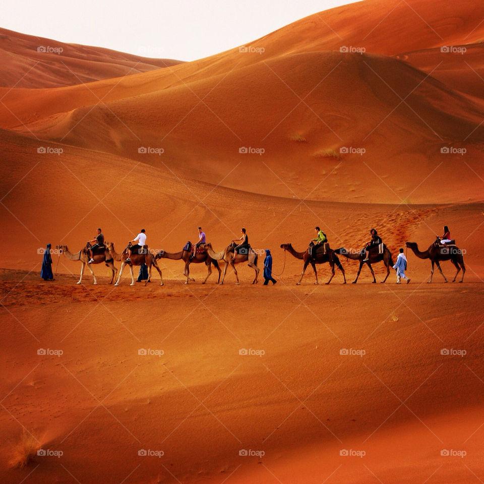 people sand brown desert by hofit25