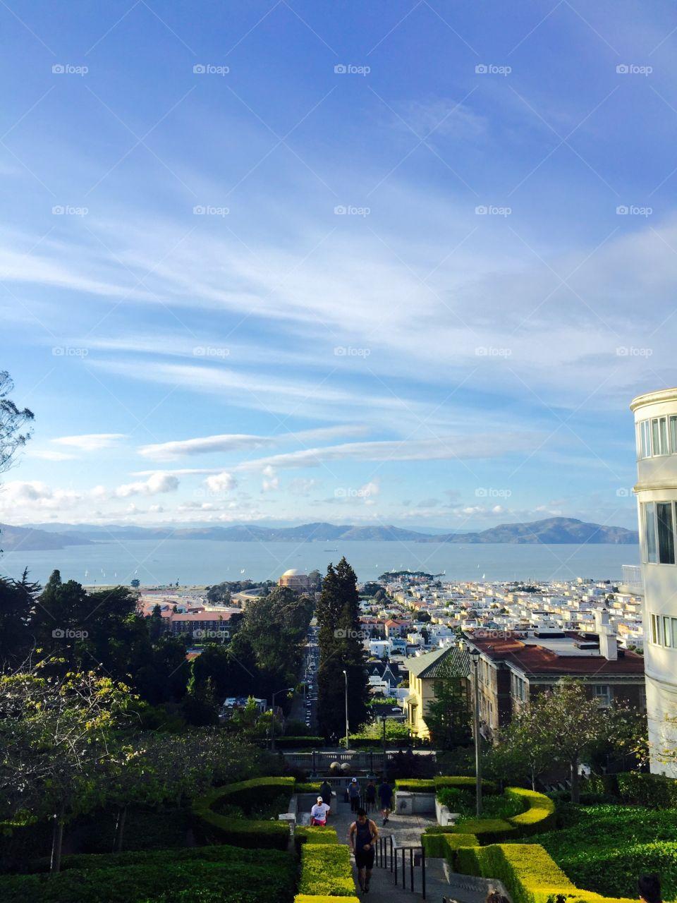 Edge of SF
