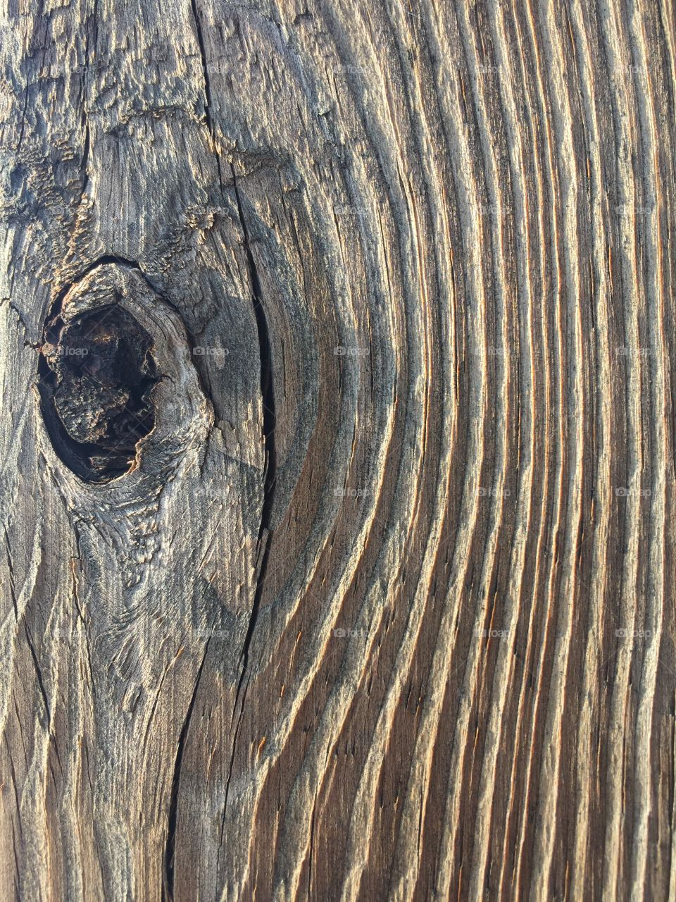 Closeup of the texture of weathered lumber