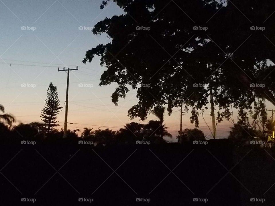 SoFlo Backyard Sunset