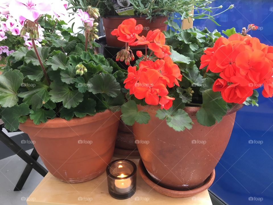 Flowerpots with small candle