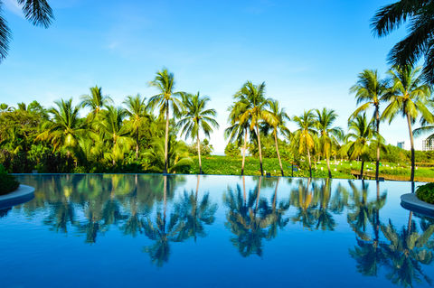 Perfect Pool. A beautiful reflection of palm trees on the pool in Puerto Vallarta Mexico