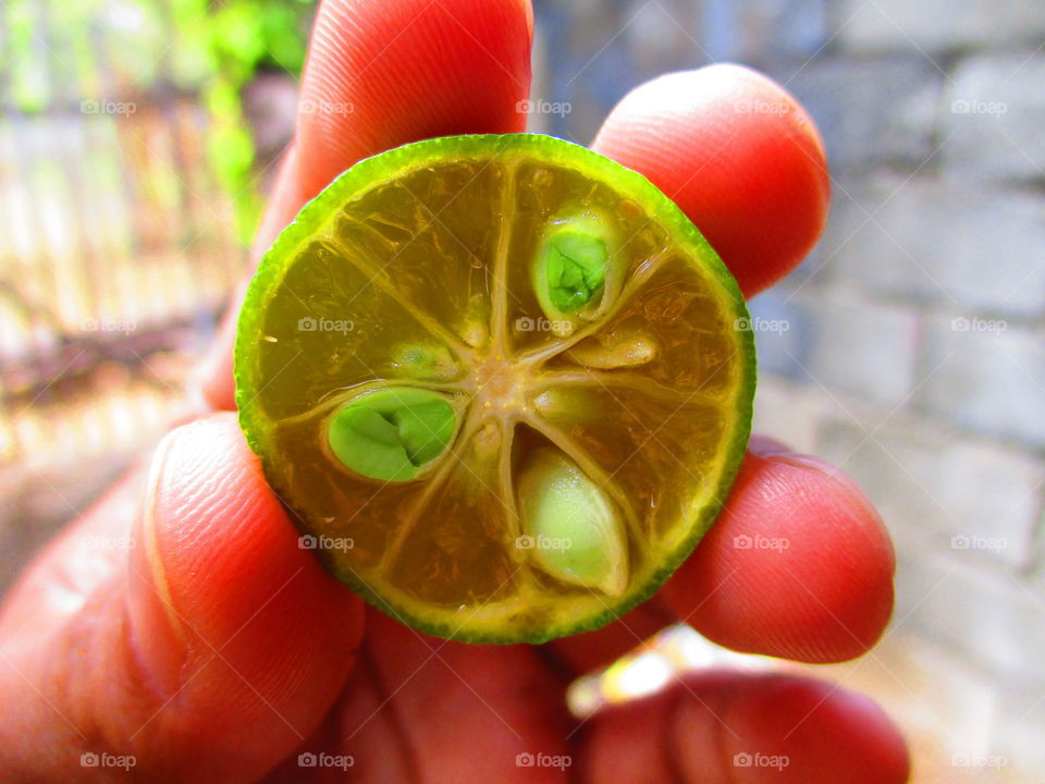 Extreme close-up of grapefruit in hand