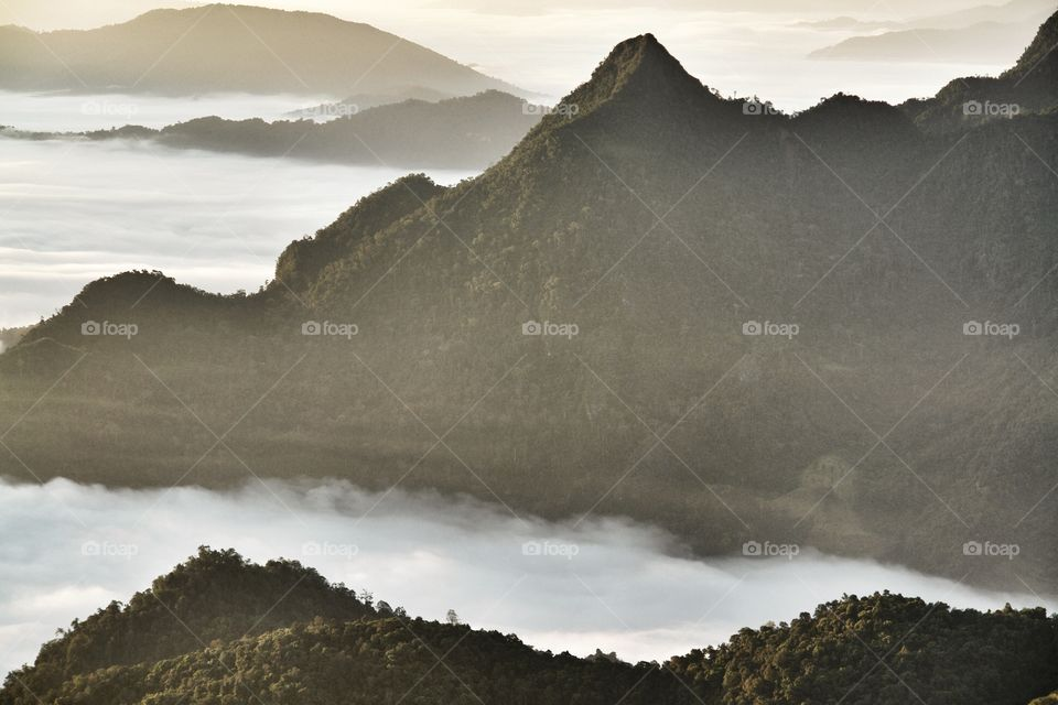Landscape view of mountain and mist