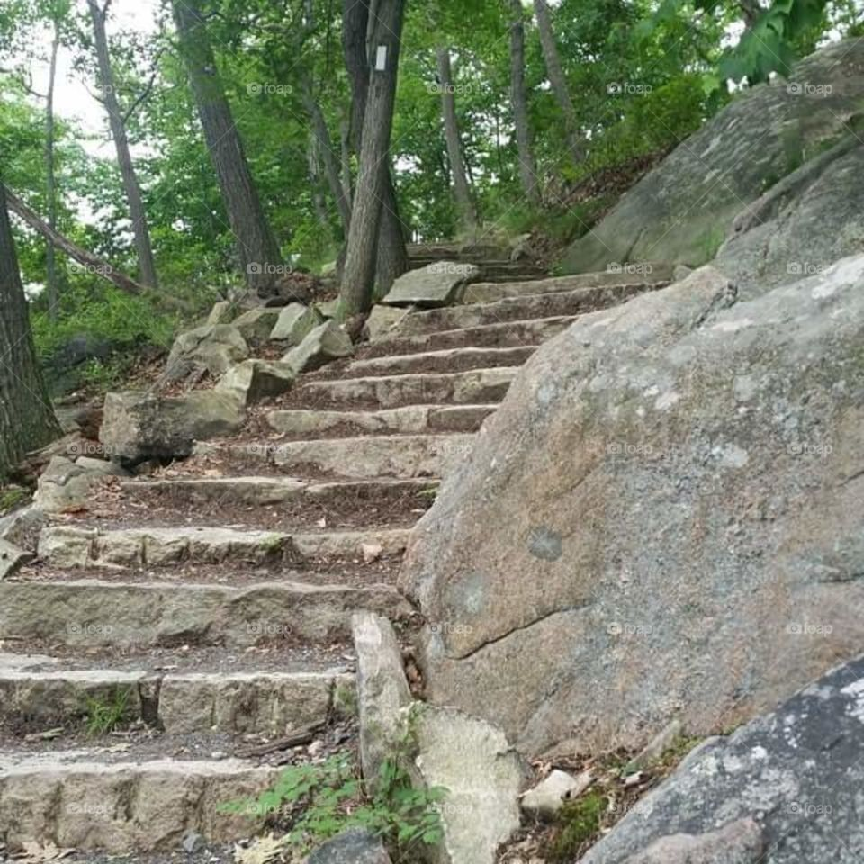 The path up Bear Mountain, located in Highlands and Stony Point NY. This was the path I hiked to get to the top, and it was beautiful!