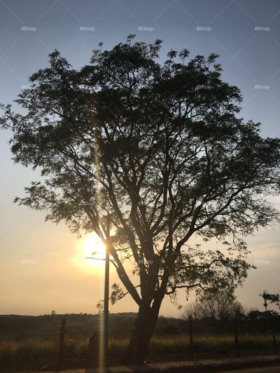 🌅Desperta, #Jundiaí! Ótima 6a feira a todos. 🍃 #sol #sun #sky #céu #photo #nature #manhã #morning #alvorada #natureza #horizonte #fotografia #paisagem #inspiração #amanhecer #mobgraphy #FotografeiEmJundiaí