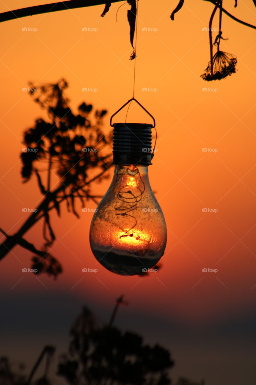#sun through light bulb #sunset #horizon #illusion