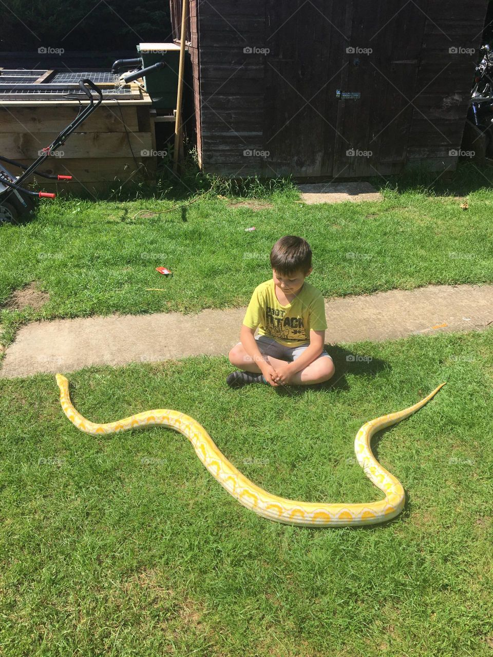 Snake and child