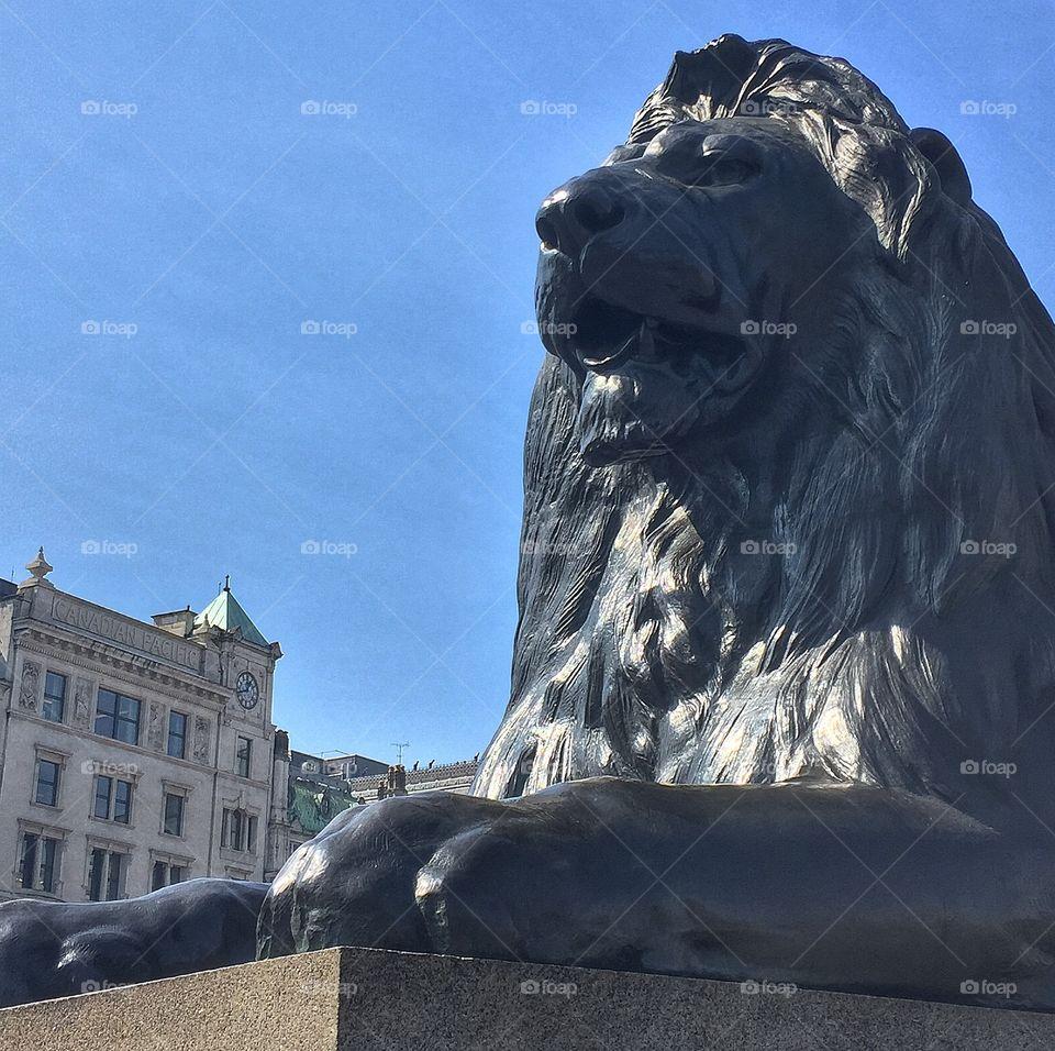 Trafalgar lion. Taken 24.4.15
