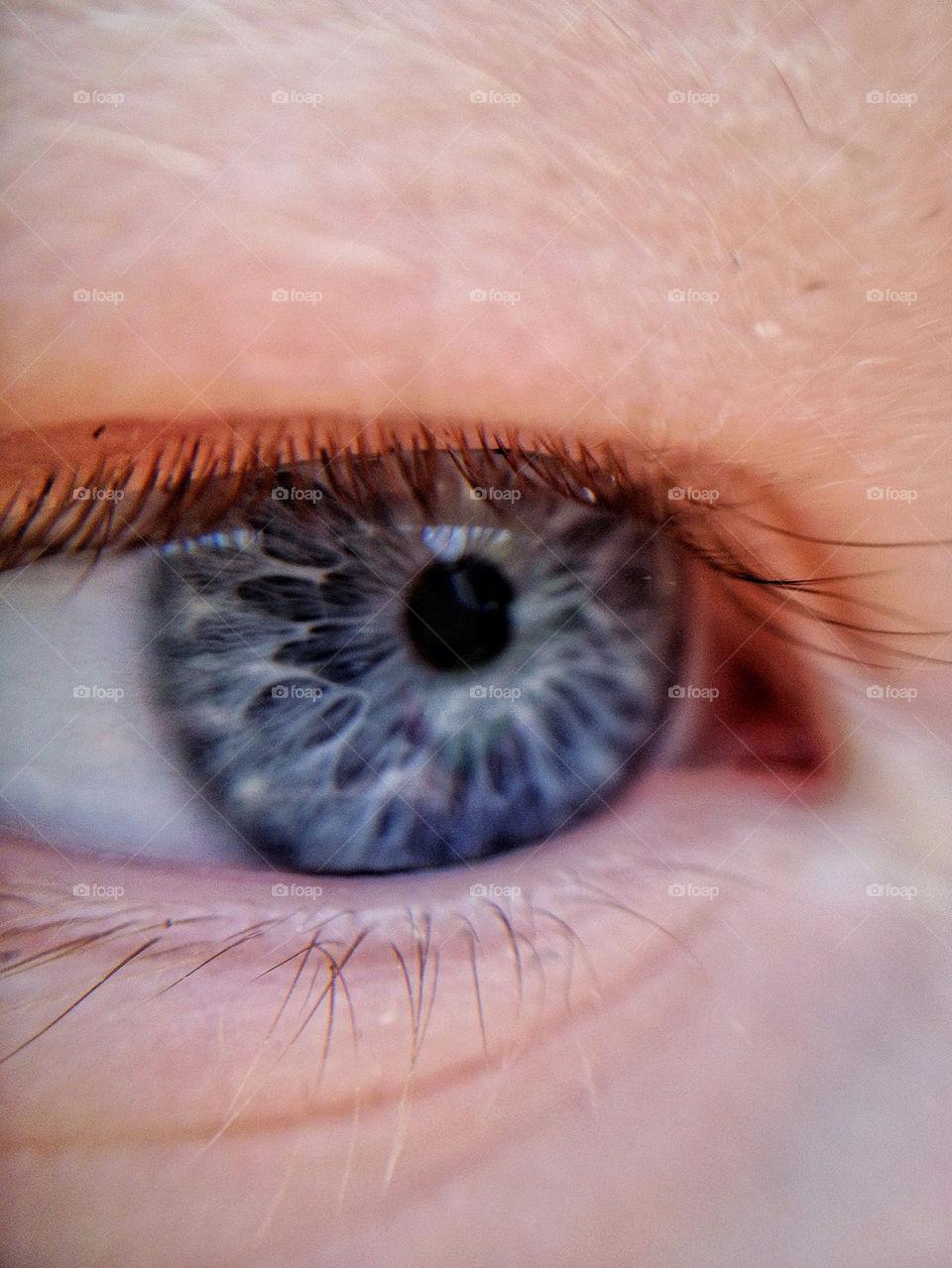 Close-up of blue eye