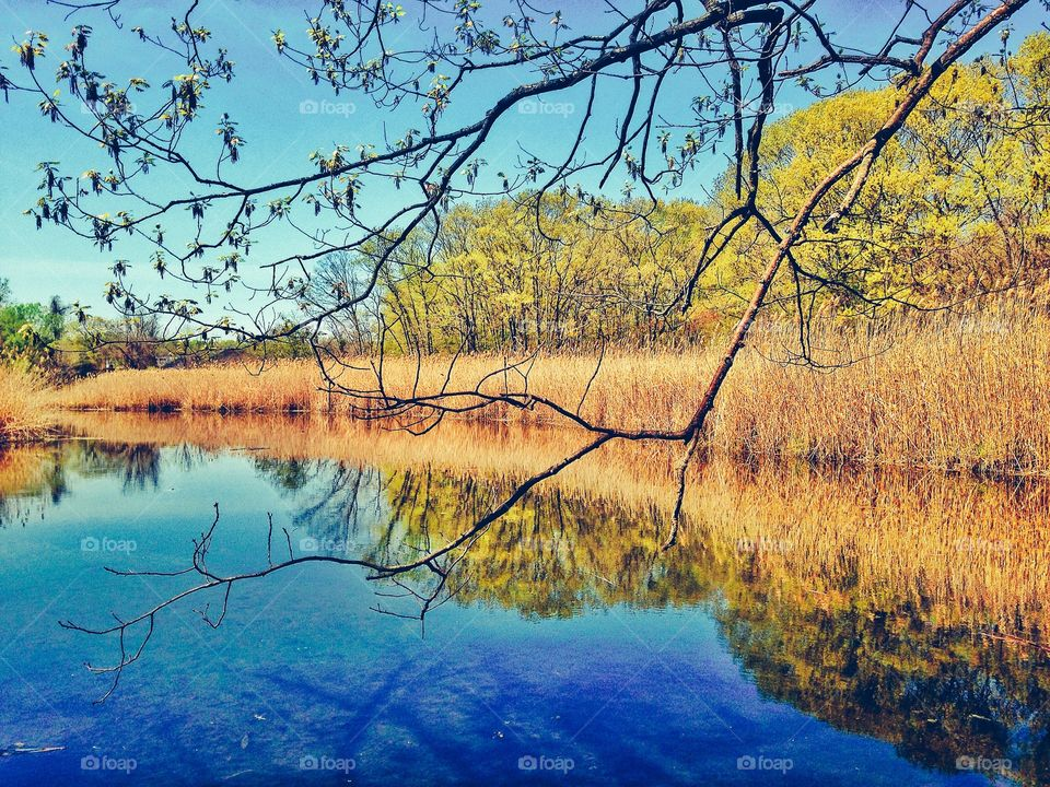 Indian River, Milford CT. Indian River, Milford CT