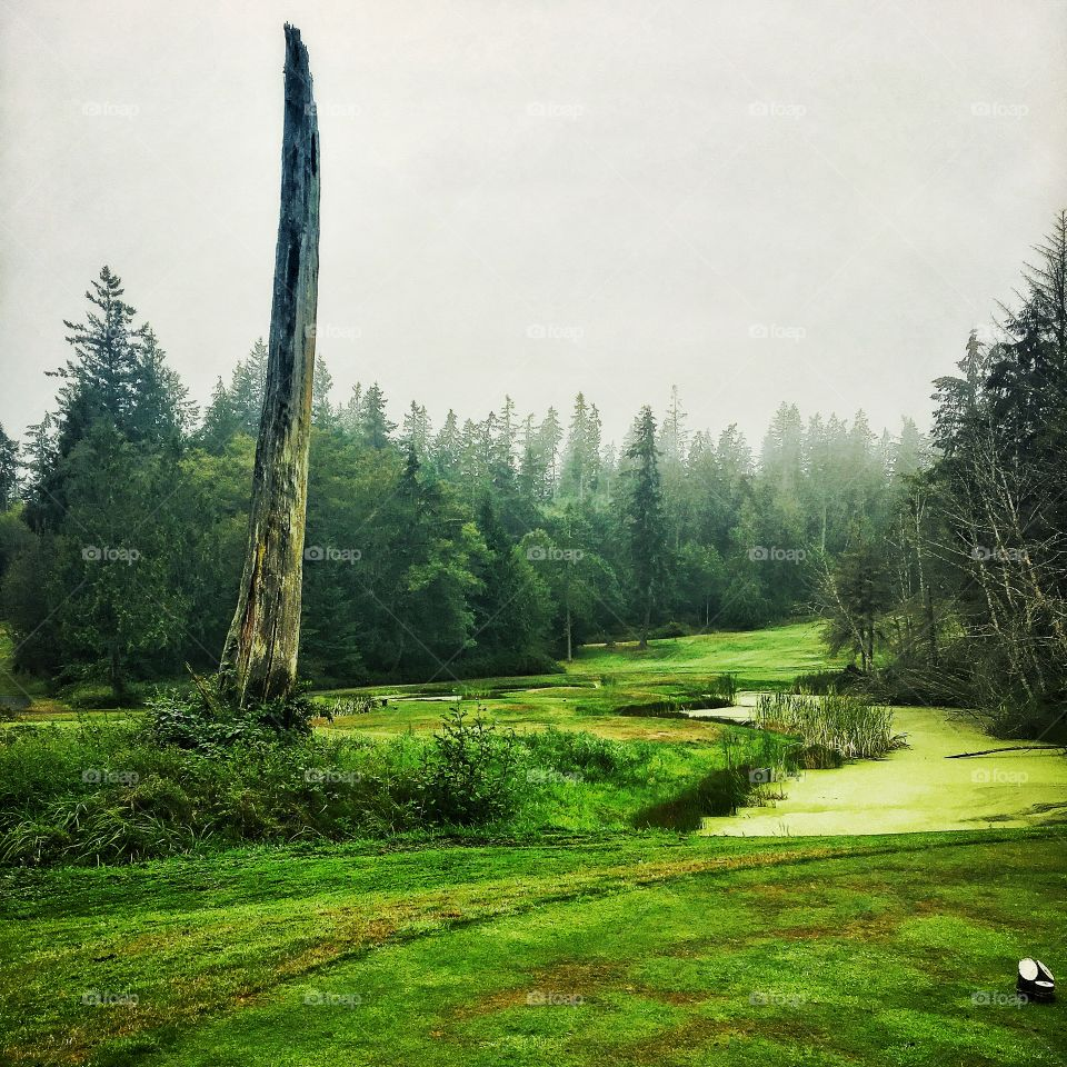 18th Hole at Port Ludlow Golf Course on the Olympic Peninsula, Washington State