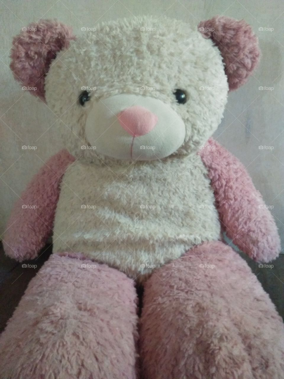 This is pink the old teddy of my second daughter Apple .She is a little bit sad and a little filthy.