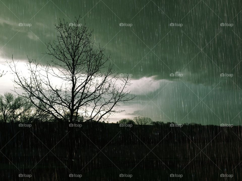 Mean and Green - low overhanging greenish rain clouds during downpour, bright sky and tree silhouette