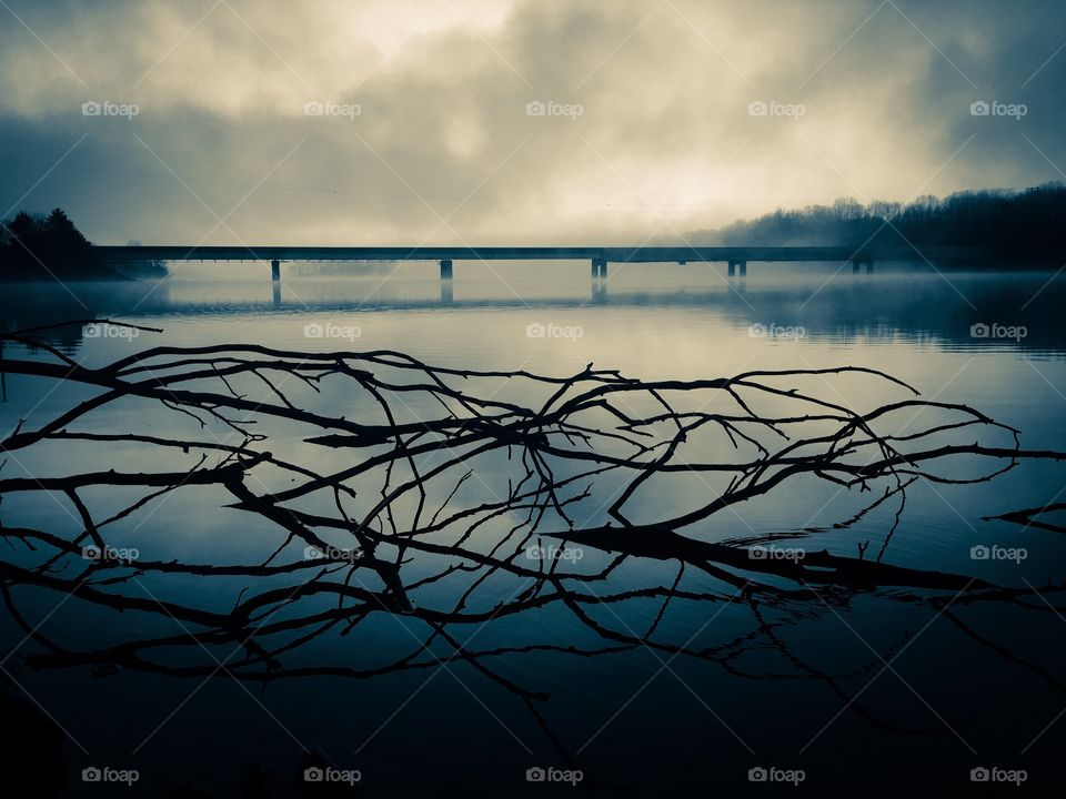 A blue selenium filter on an image of brambles protruding from the still water of a lake and a distant bridge on a foggy morning at Tims Ford State Park in Winchester Tennessee.