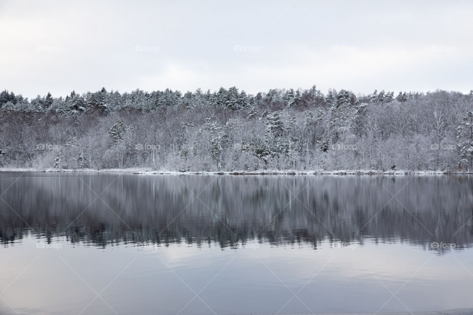 Winter wonderland lake reflection  - vinterlandskap skog sjö reflektion