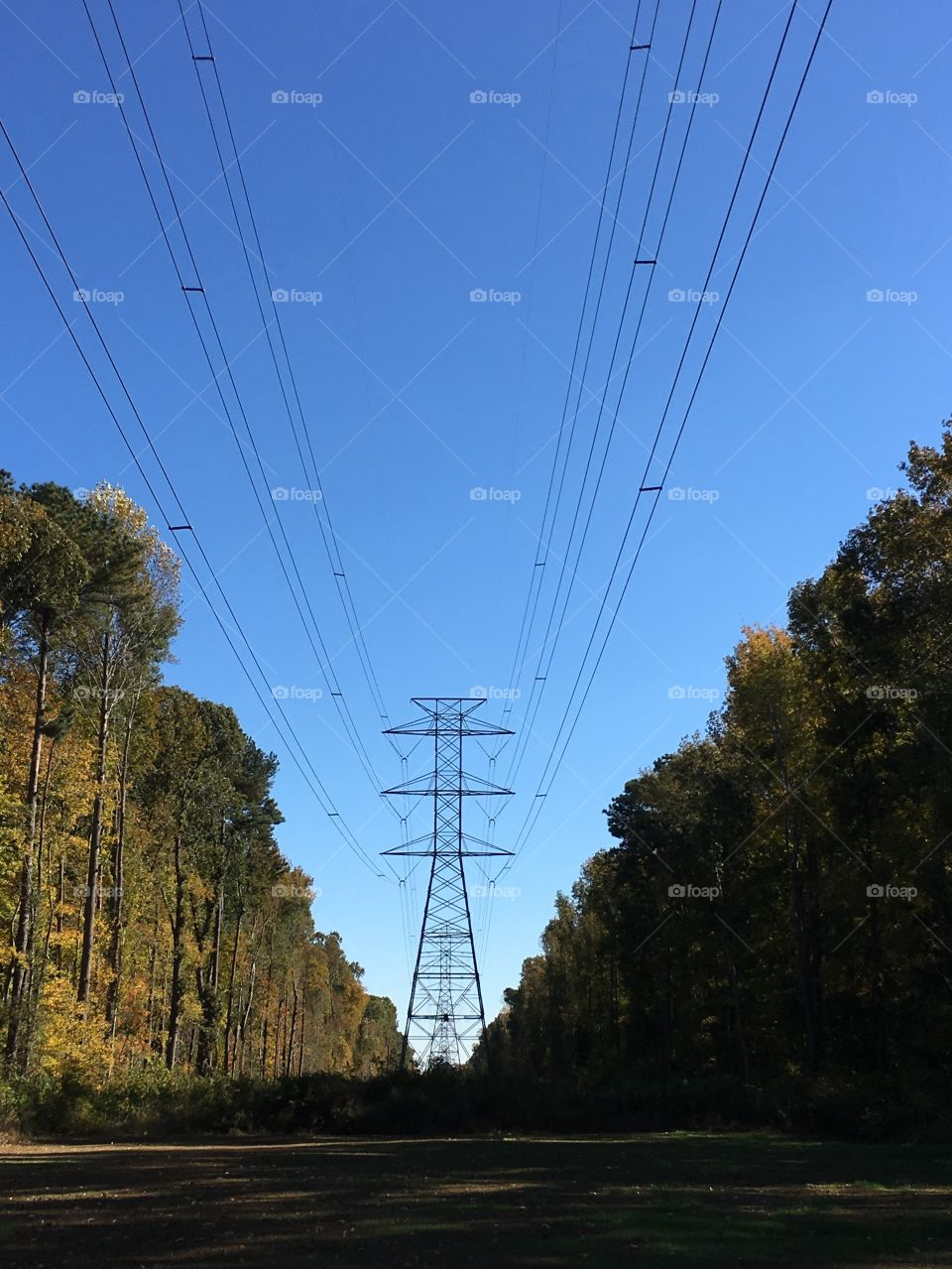 Power lines and towers