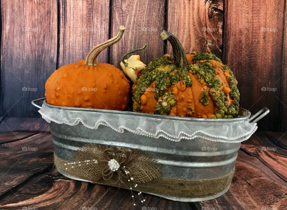 An old country style metal tub with freshly harvested and multi-colored gourds along with two heavily textured pumpkins in orange and green for the fall harvest and Halloween and Thanksgiving holidays.