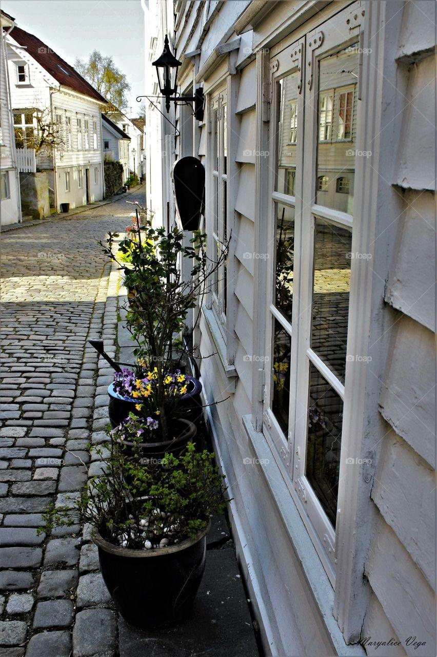 Stavanger Door