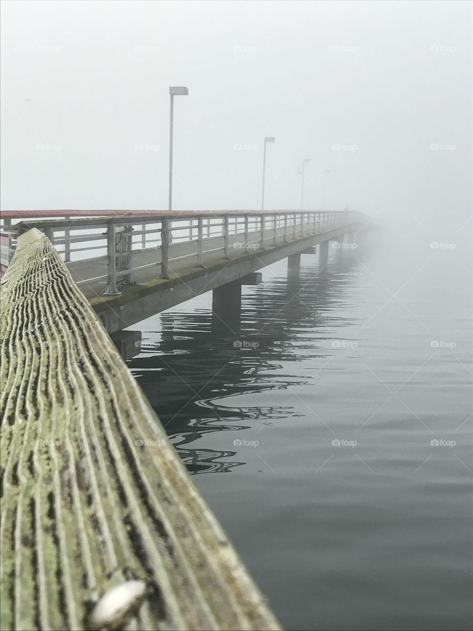 Fog on a marina in Federal Way, Wa.