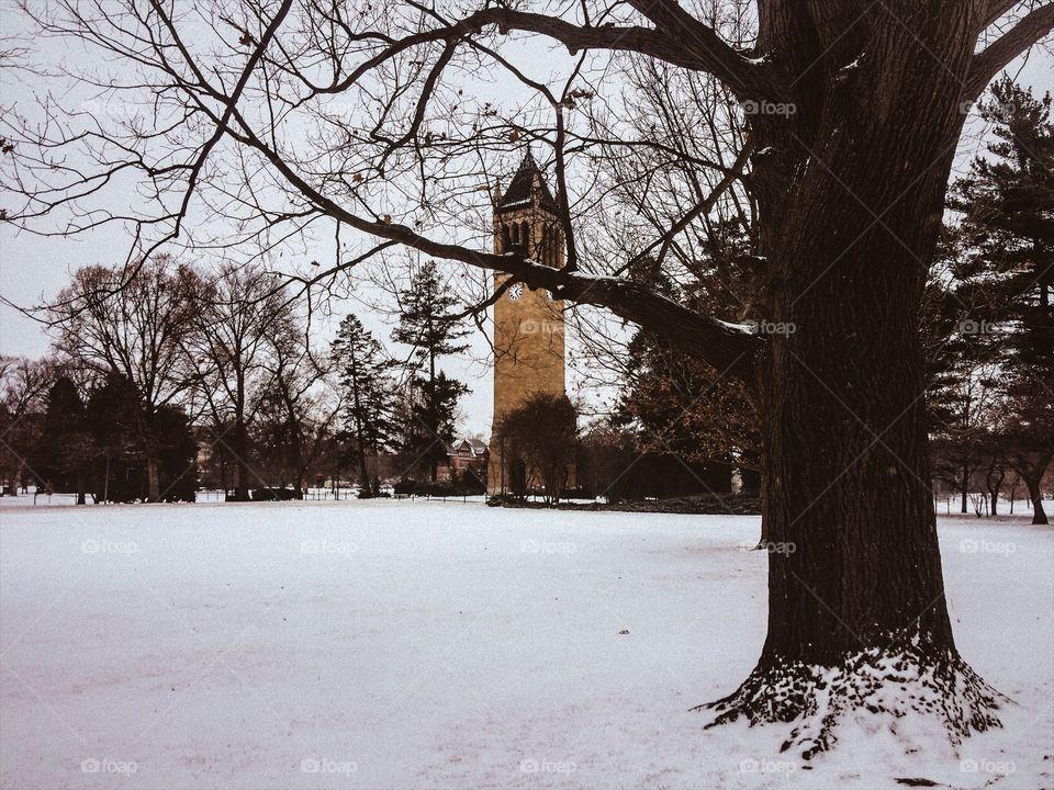 The Campanile -Iowa State University 📸